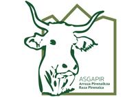 Logo Asgapir nuevo